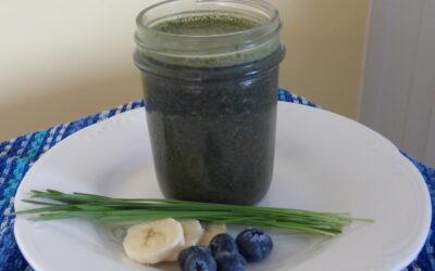 Blueberry Banana Wheatgrass Smoothie